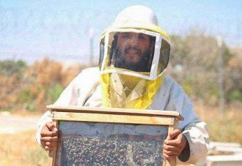 EXCLUSIVE: Hebron's Holy Honeybees: The Story of David Daniel