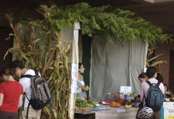 Sukkot: Celebrating under the Stars